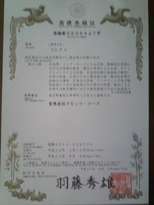 P2013_0822_122856.JPG
